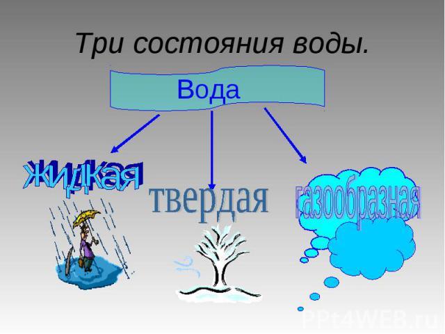 Три состояния воды.