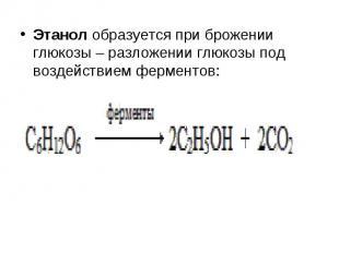 Этанол образуется при брожении глюкозы – разложении глюкозы под воздействием фер