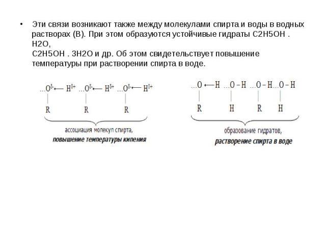 Эти связи возникают также между молекулами спирта и воды в водных растворах (В). При этом образуются устойчивые гидраты C2H5OH . H2O, C2H5OH . 3H2O и др. Об этом свидетельствует повышение температуры при растворении спирта в воде. Эти связи возникаю…