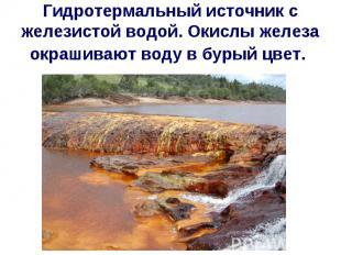 Гидротермальный источник с железистой водой. Окислы железа окрашивают воду в бур