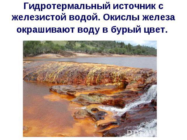 Гидротермальный источник с железистой водой. Окислы железа окрашивают воду в бурый цвет.