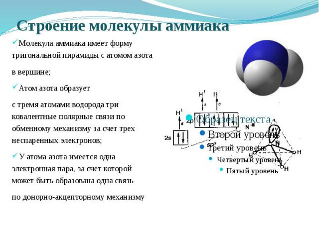 Строение молекулы аммиака Молекула аммиака имеет форму тригональной пирамиды с атомом азота в вершине; Атом азота образует с тремя атомами водорода три ковалентные полярные связи по обменному механизму за счет трех неспаренных электронов; У атома аз…