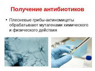 Плесневые грибы-актиномицеты обрабатывают мутагенами химического и физического д