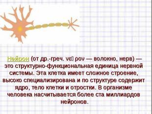 Нейрон(отдр.-греч. νεῦρον— волокно, нерв)— это структурн