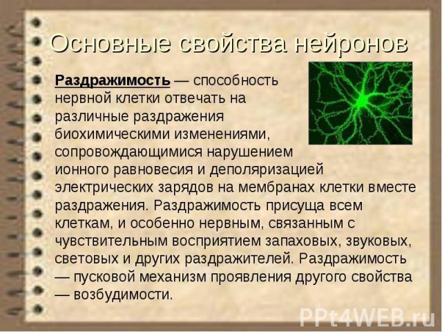 Основные свойства нейронов Раздражимость— способность нервной клетки отвечать на различные раздражения биохимическими изменениями, сопровождающимися нарушением ионного равновесия и деполяризацией электрических зарядов на мембранах клетки вмест…