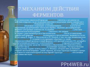 До установления химической природы ферментов гипотезы о механизме их действия оп