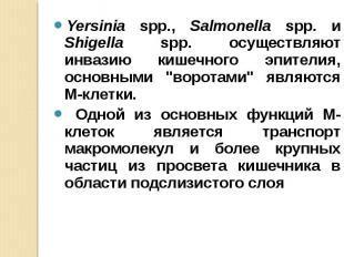 Yersinia spp., Salmonella spp. и Shigella spp. осуществляют инвазию кишечного эп