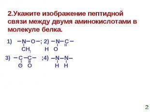 2.Укажите изображение пептидной связи между двумя аминокислотами в молекуле белк