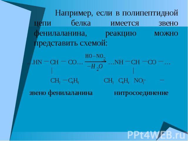 Например, если в полипептидной цепи белка имеется звено фенилаланина, реакцию можно представить схемой: Например, если в полипептидной цепи белка имеется звено фенилаланина, реакцию можно представить схемой: …HN CH CO… …NH CH CO … CH2 C6H5 CH2 C6H4 …