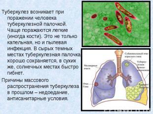 Туберкулез возникает при поражении человека туберкулезной палочкой. Чаще поражаю