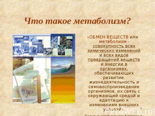 «ОБМЕН ВЕЩЕСТВ или метаболизм - совокупность всех химических изменений и всех ви