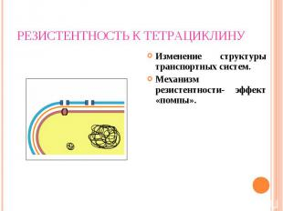 Изменение структуры транспортных систем. Изменение структуры транспортных систем