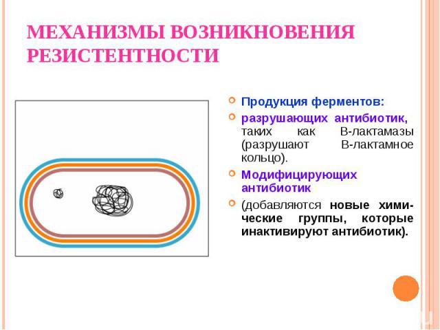 Продукция ферментов: разрушающих антибиотик, таких как B-лактамазы (разрушают В-лактамное кольцо). Модифицирующих антибиотик (добавляются новые хими-ческие группы, которые инактивируют антибиотик).