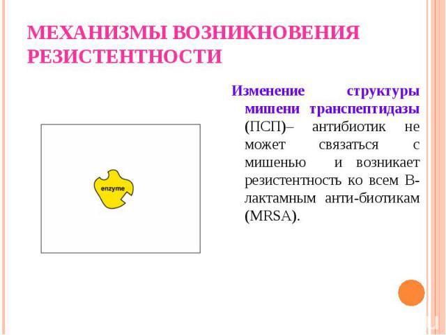 Изменение структуры мишени транспептидазы (ПСП)– антибиотик не может связаться с мишенью и возникает резистентность ко всем В-лактамным анти-биотикам (MRSA). Изменение структуры мишени транспептидазы (ПСП)– антибиотик не может связаться с мишенью и …