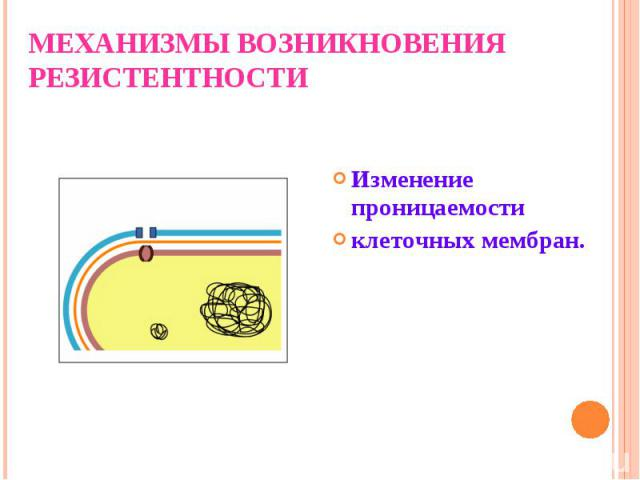 Изменение проницаемости клеточных мембран.