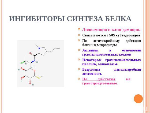 Линкомицин и клин-дамицин. Линкомицин и клин-дамицин. Связываются с 50S субъединицей По антимикробному действию близки к макролидам. Активны а отношении грамположительных кокков Некоторых грамположительных палочек, микоплазм. Выражена антианаэробная…
