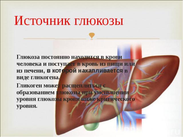 Глюкоза постоянно находится в крови человека и поступает в кровь из пищи или из печени, в которой накапливается в виде гликогена. Глюкоза постоянно находится в крови человека и поступает в кровь из пищи или из печени, в которой накапливается в виде …