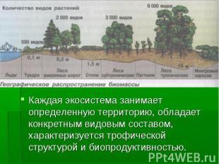 Каждая экосистема занимает определенную территорию, обладает конкретным видовым