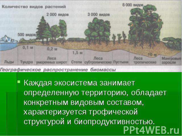 Каждая экосистема занимает определенную территорию, обладает конкретным видовым составом, характеризуется трофической структурой и биопродуктивностью. Каждая экосистема занимает определенную территорию, обладает конкретным видовым составом, характер…