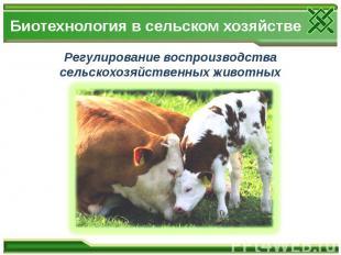 Биотехнология в сельском хозяйстве Регулирование воспроизводства сельскохозяйств