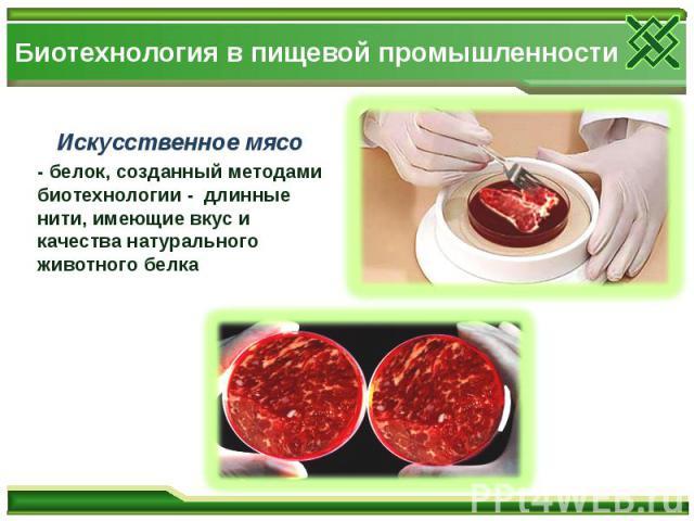 Биотехнология в пищевой промышленности Искусственное мясо - белок, созданный методами биотехнологии - длинные нити, имеющие вкус и качества натурального животного белка