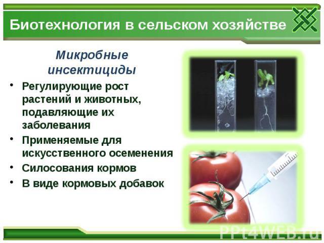 Биотехнология в сельском хозяйстве Микробные инсектициды Регулирующие рост растений и животных, подавляющие их заболевания Применяемые для искусственного осеменения Силосования кормов В виде кормовых добавок
