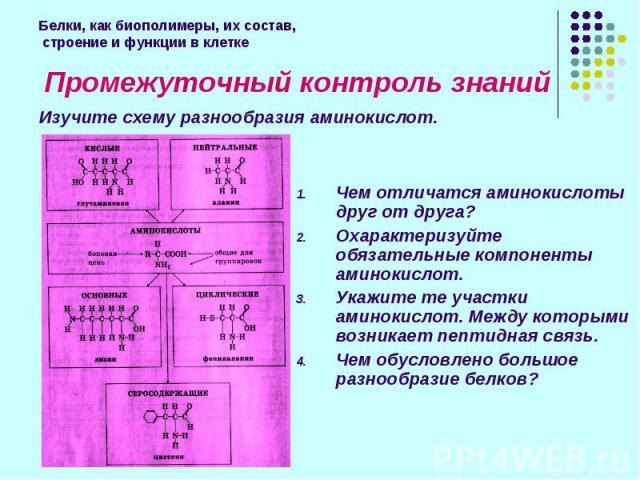 Промежуточный контроль знаний Промежуточный контроль знаний