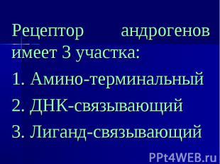 Рецептор андрогенов имеет 3 участка: Рецептор андрогенов имеет 3 участка: 1. Ами