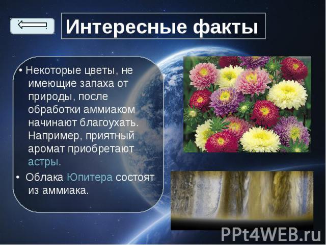 • Некоторые цветы, не имеющие запаха от природы, после обработки аммиаком начинают благоухать. Например, приятный аромат приобретаютастры. • Некоторые цветы, не имеющие запаха от природы, после обработки аммиаком начинают благоухать. Например,…