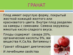 ГРАНАТ Плод имеет округлую форму, покрытый жесткой кожицей желтого или красноват