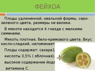 ФЕЙХОА Плоды удлиненной, овальной формы, серо-зеленого цвета, размеры не велики.
