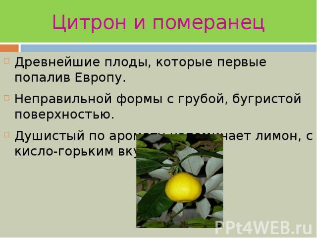 Цитрон и померанец Древнейшие плоды, которые первые попалив Европу. Неправильной формы с грубой, бугристой поверхностью. Душистый по аромату напоминает лимон, с кисло-горьким вкусом.