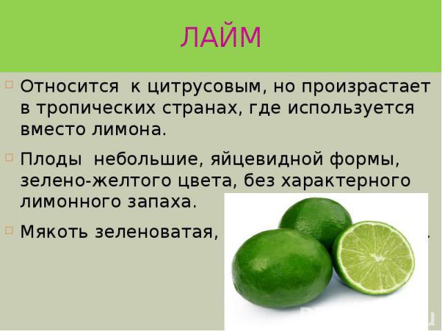 ЛАЙМ Относится к цитрусовым, но произрастает в тропических странах, где используется вместо лимона. Плоды небольшие, яйцевидной формы, зелено-желтого цвета, без характерного лимонного запаха. Мякоть зеленоватая, сочная, очень кислая.