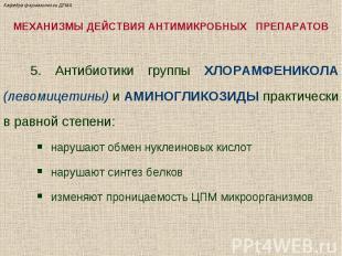 МЕХАНИЗМЫ ДЕЙСТВИЯ АНТИМИКРОБНЫХ ПРЕПАРАТОВ 5. Антибиотики группы ХЛОРАМФЕНИКОЛА