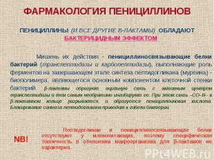 ФАРМАКОЛОГИЯ ПЕНИЦИЛЛИНОВ ПЕНИЦИЛЛИНЫ (И ВСЕ ДРУГИЕ Β-ЛАКТАМЫ) ОБЛАДАЮТ БАКТЕРИЦ
