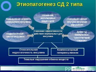 Этиопатогенез СД 2 типа