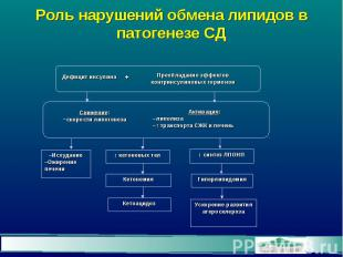 Роль нарушений обмена липидов в патогенезе СД