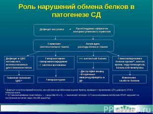 Роль нарушений обмена белков в патогенезе СД