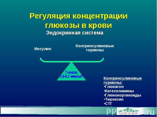 Регуляция концентрации глюкозы в крови