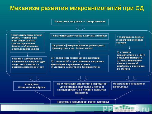 Механизм развития микроангиопатий при СД