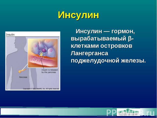 Инсулин Инсулин — гормон, вырабатываемый β-клетками островков Лангерганса поджелудочной железы.