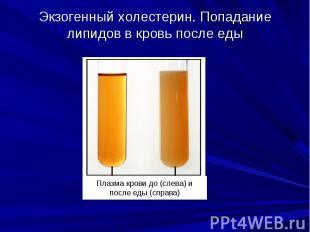 Экзогенный холестерин. Попадание липидов в кровь после еды