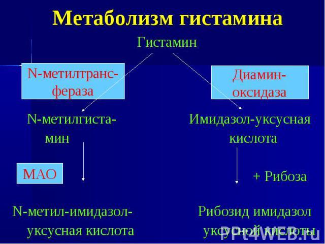 Метаболизм гистамина Гистамин N-метилгиста- Имидазол-уксусная мин кислота + Рибоза N-метил-имидазол- Рибозид имидазол уксусная кислота уксусной кислоты