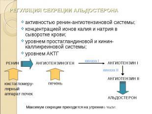 активностью ренин-ангиотензиновой системы; активностью ренин-ангиотензиновой сис