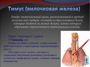 Лимфо-эпителиальный орган, расположенный в грудной полости над сердцем. состоит