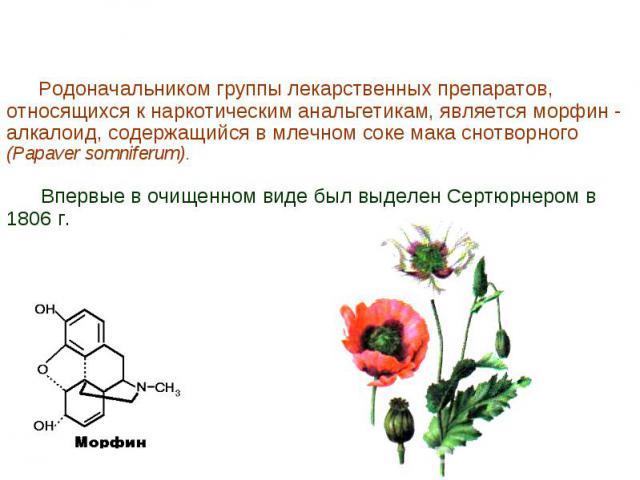 Родоначальником группы лекарственных препаратов, относящихся к наркотическим анальгетикам, является морфин - алкалоид, содержащийся в млечном соке мака снотворного (Papaver somniferum). Впервые в очищенном виде был выделен Сертюрнером в 1806 г.