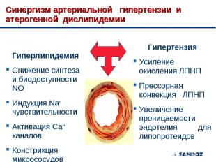 Гиперлипидемия Гиперлипидемия Снижение синтеза и биодоступности NO Индукция Na+