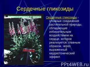 Cердечные гликозиды - сложные соединения растительной природы, обладающие избира