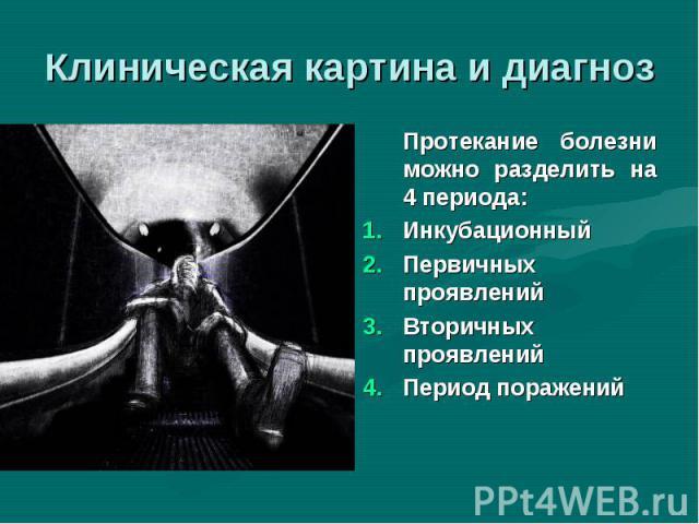 Протекание болезни можно разделить на 4 периода: Протекание болезни можно разделить на 4 периода: Инкубационный Первичных проявлений Вторичных проявлений Период поражений
