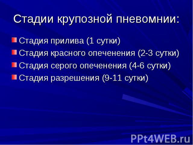 Стадия прилива (1 сутки) Стадия прилива (1 сутки) Стадия красного опеченения (2-3 сутки) Стадия серого опеченения (4-6 сутки) Стадия разрешения (9-11 сутки)